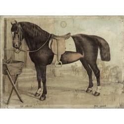 """Leinwand """"Het Paard"""""""
