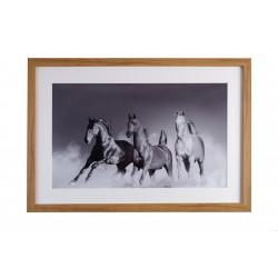Gerahmtes Pferdefoto...