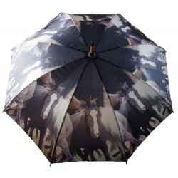 Reiter Regenschirm