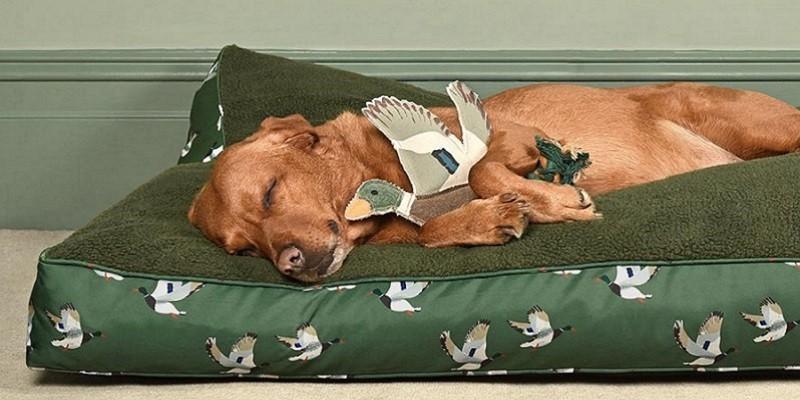 Hundebedarf mt Pferdemotiven. Deko und Accessoires mit Tiermotiven.